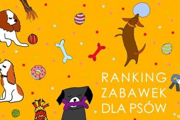 Ranking zabawek dla psów